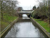 TQ2387 : River Brent by Robin Webster