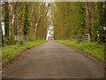 SJ8779 : Dean Farm, Mottram St Andrew by David Dixon