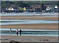 SX9981 : The Exe estuary, Exmouth by Chris Allen