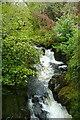 SX6960 : River Avon from Lydia Bridge by Graham Horn