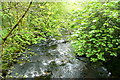 SX6862 : River Avon by Graham Horn