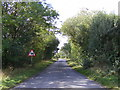 TM3485 : Low Street, St.Peter South Elmham by Adrian Cable