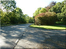 SU8016 : Driveway to Telegraph House off the B2141 by Dave Spicer