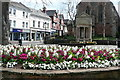 SS9646 : Minehead in bloom by Graham Horn
