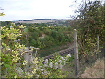 TQ5365 : Railway cutting near Eynsford by Marathon