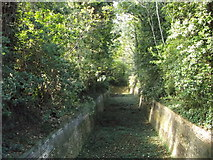 TQ7668 : Defensive Ditch towards Fort Amherst (2) by David Anstiss
