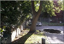 TQ7668 : Last section of the Lines, Sally Port Gardens by David Anstiss