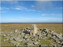 NY6834 : The trig point on the summit of Cross Fell by Mike Quinn
