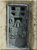 NY6834 : OSBM flush bracket on the trig point on the summit of Cross Fell by Mike Quinn