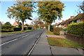 TQ8933 : Appledore Road, Tenterden by Julian P Guffogg