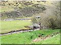 SJ1335 : Footbridge and sheepfold by Row17