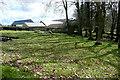 SS8939 : Smallholding at Hawkington Farm by Graham Horn