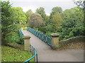 NZ3956 : Footbridge in Mowbray Park by peter robinson