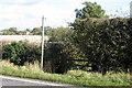 SP9727 : Bridleway toward the Clipstone Brook by Philip Jeffrey