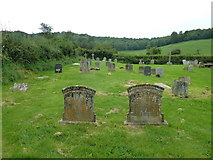 ST5906 : St Mary, Melbury Bubb: churchyard (G) by Basher Eyre
