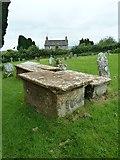 ST5906 : St Mary, Melbury Bubb: churchyard (J) by Basher Eyre