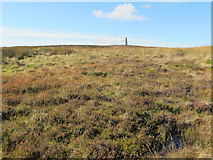NY8154 : Moorland below the northern Allendale lead smelting flue chimney by Mike Quinn