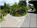 ST4894 : Weyloed Lane, Mynydd-bach by Jaggery