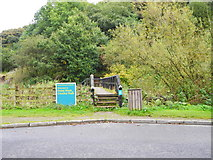SD9100 : Footbridge off Stannybrook Road - Oldham by John Topping