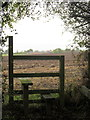 SP8226 : Stile and Old Lower Dean Farm beyond by Philip Jeffrey