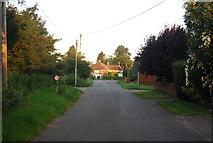 TG1607 : School Lane, Little Melton by N Chadwick