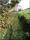 SE0125 : A narrow part of Hebden Royd Footpath 67 by Humphrey Bolton
