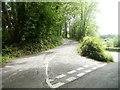 SO3205 : NW end of Penwern Lane near Penperlleni by Jaggery
