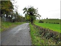 H4769 : Crevenagh Road by Kenneth  Allen
