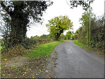 H4769 : Crevenagh Road, Aghagallon by Kenneth  Allen