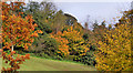 J3278 : Autumn trees, Belfast by Albert Bridge
