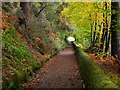 NS5575 : Path alongside Mugdock Reservoir by Jim Barton