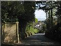 SX9374 : Looking down Buckeridge Road by Robin Stott