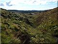 NR8156 : Looking down burn on south-west flank of Cruach nam Fiadh in Kintyre by ian shiell