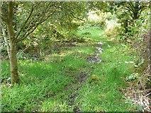 SE0125 : Hebden Royd Path 54 approaching Scout Bottom Lane by Humphrey Bolton