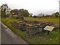 NY5865 : Hadrian's Wall, Turret 51b (Leahill) by David Dixon