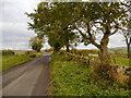 NY5865 : Un-named Road at Leahill Turret by David Dixon