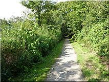 SW6745 : Portreath Tramroad, looking west by Richard Law