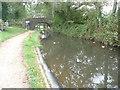 SO3105 : Bridge 72 on the Mon. & Brec. near Goytre by Jeremy Bolwell