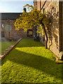 NY5563 : Lanercost Priory, North Cloister by David Dixon