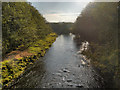 NY5663 : River Irthing by David Dixon