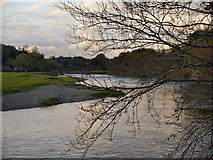 NY4756 : River Eden, Warwick-on-Eden by David Dixon
