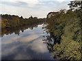NY9270 : River North Tyne by David Dixon