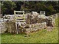 NY9269 : Remains of Brunton Turret, Hadrian's Wall by David Dixon