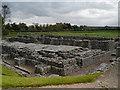 NY9864 : Excavated Roman Town, Corbridge by David Dixon