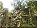 SX5065 : Blocked stile, Roborough Down by Derek Harper