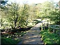 NZ6503 : Ford over the River Esk in dappled shade by Christine Johnstone