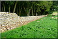SP1516 : Dry stone walling work in progress by Graham Horn