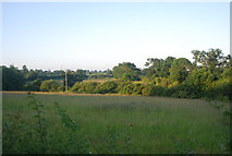 TG1407 : Farmland south of Watton Rd by N Chadwick