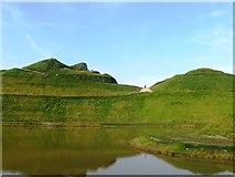 NZ2377 : Profile, Northumberlandia by Alex McGregor