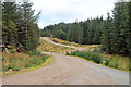 NM9702 : Forestry roads in Eredine Forest by Steven Brown